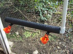 chicken waterer cup system